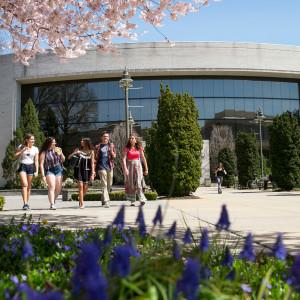 美国霍夫斯特拉大学