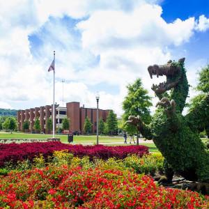 جامعة ألاباما في برمنغهامجامعة ألاباما في برمنجهام