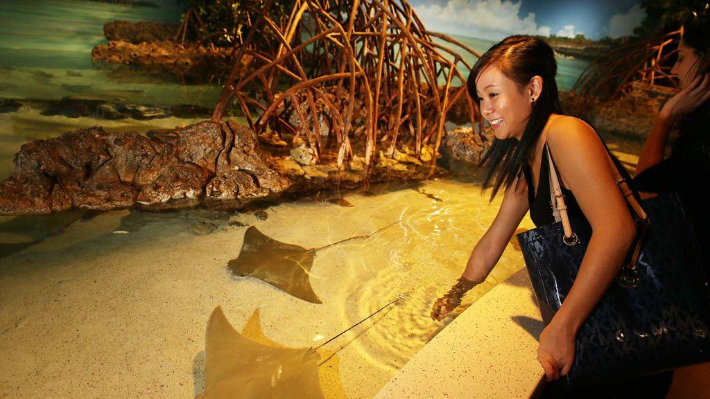 Suffolk Boston Aquarium