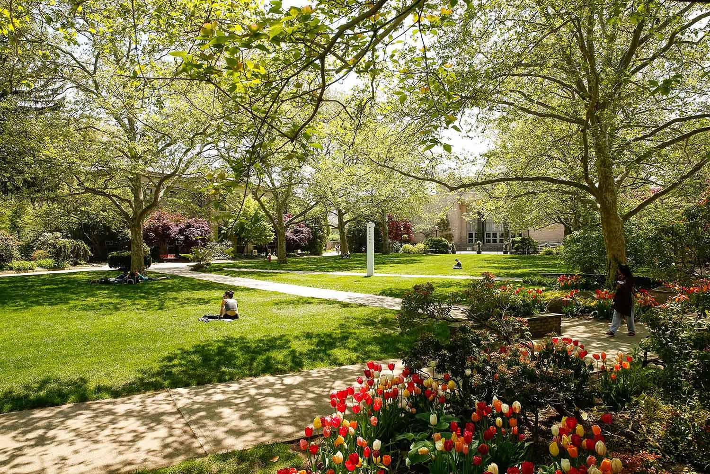 校园生活与城市喧嚣,霍夫斯特拉大学二者兼备