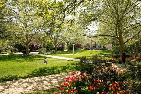 Campus life and city life, have it all at Hofstra