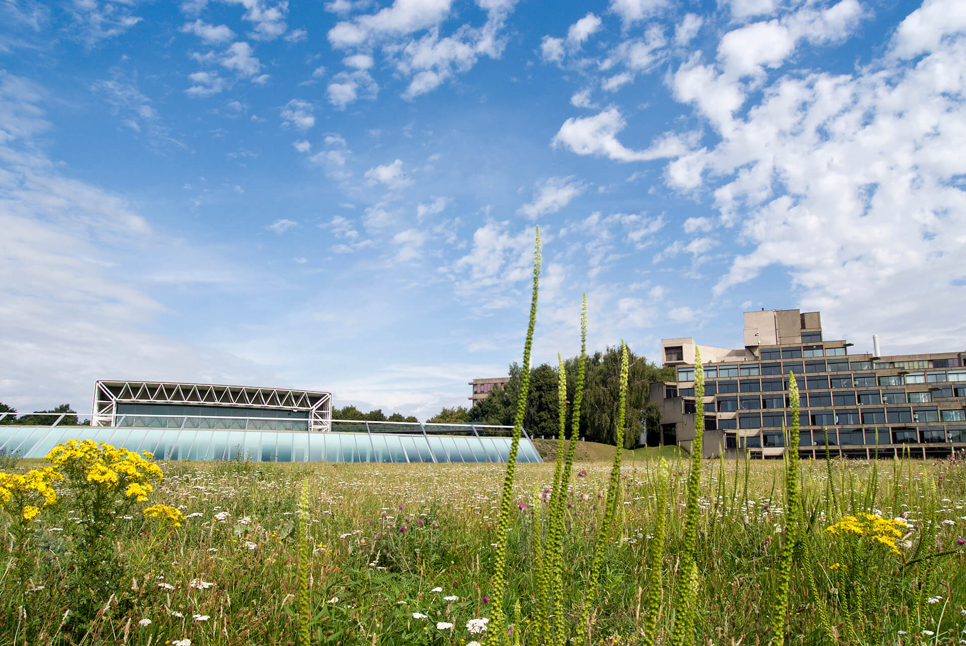 View of UEA campus with Ziggurats and Sainsbury Centre for Visual Arts