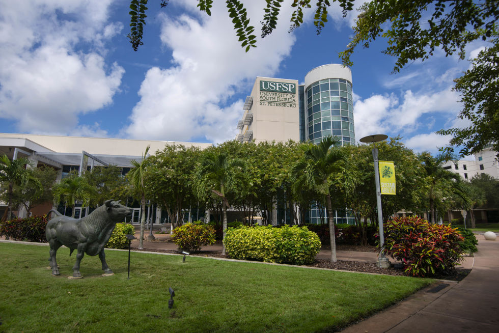 USF St. Petersburg campus