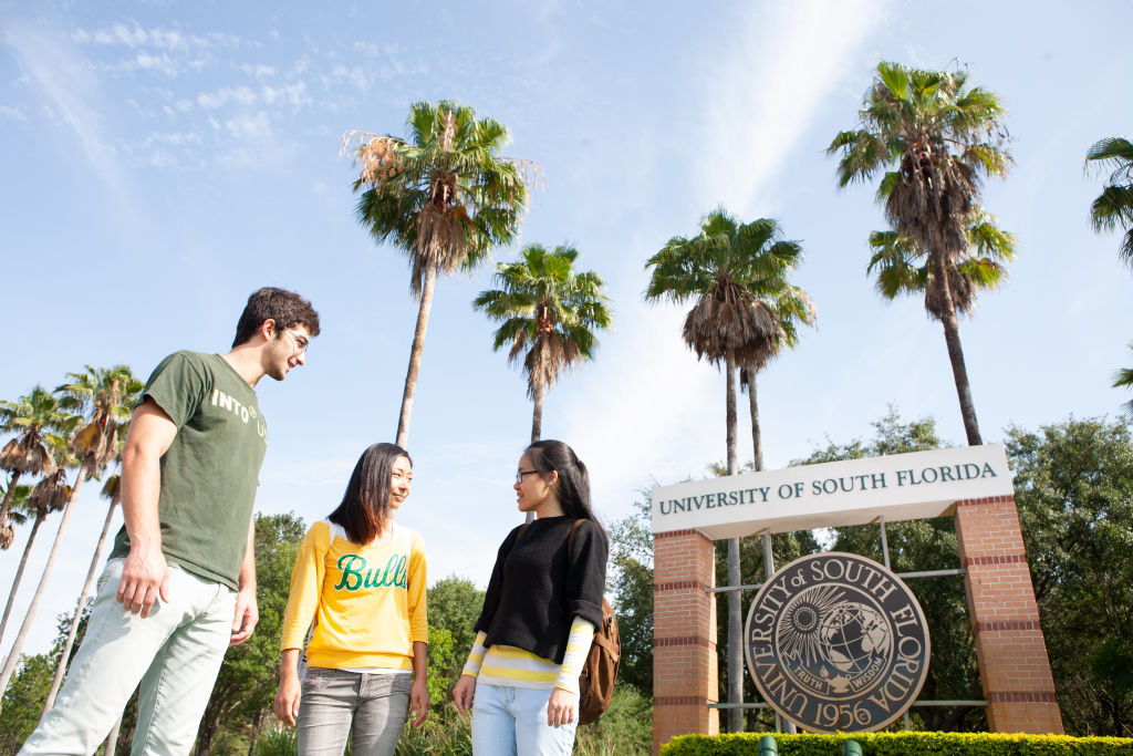 USF Students talking outside by mural