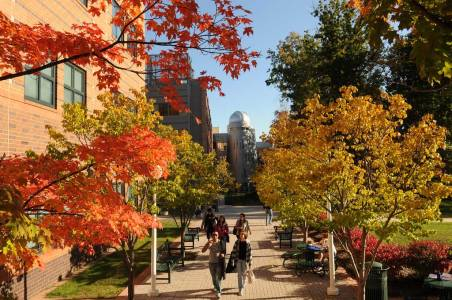 Trees change color on campus at George Mason University